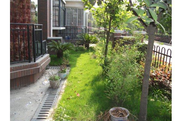 一楼带花园装修